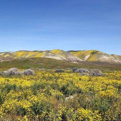 Carrizo Plain National Monument User Photo