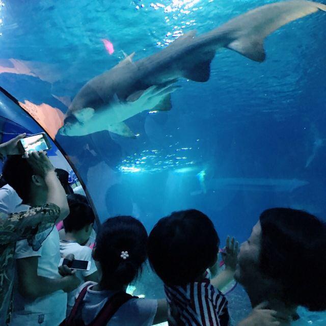 Changfeng Ocean World