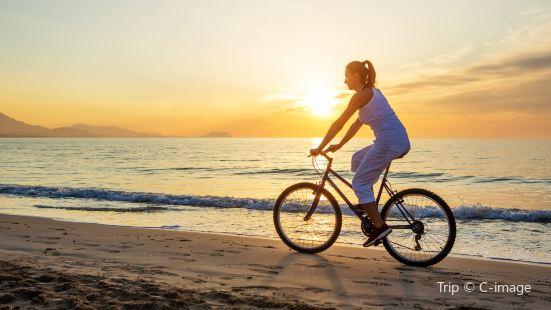 Gogreen Bicycle Rental