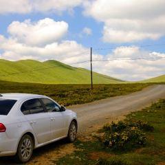 桑科草原用戶圖片