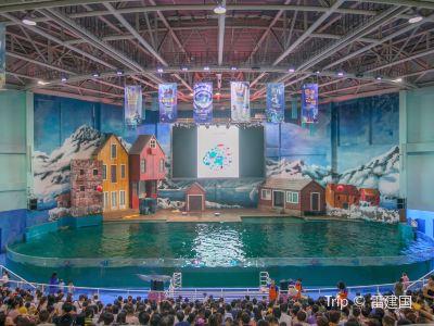 曲江海洋極地公園