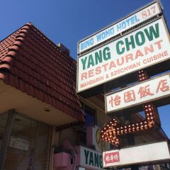 Yang Chow User Photo
