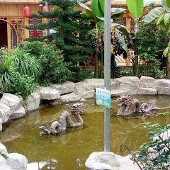 白雲生態園用戶圖片