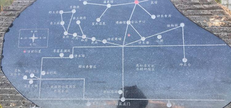 神農溫泉度假村3