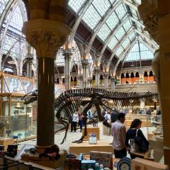Pitt Rivers Museum User Photo
