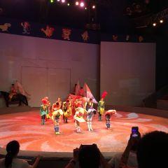 Shanghai Circus World User Photo