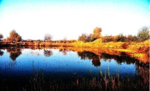 天湖生態園