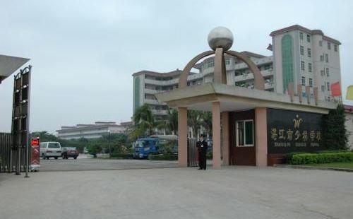 Zhanjiang Shaolin Wushu School