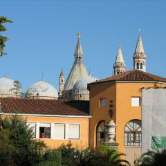 Orto Botanico dell'Università di Padova User Photo