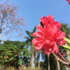 永泰公園用戶圖片
