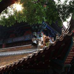興化禪寺用戶圖片