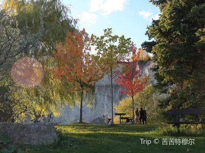 Bluffers Park