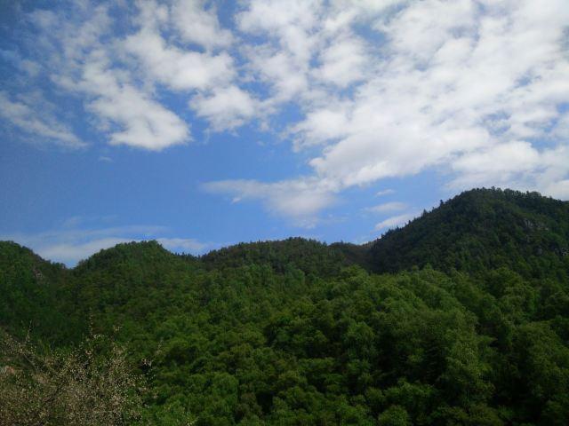 칸불라 국가삼림공원