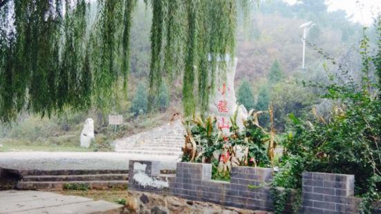小龍山公園