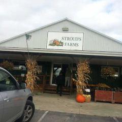 Strouds Run State Park用戶圖片