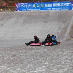 桃林溝滑雪場用戶圖片