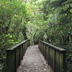 Zealandia (Karori Wildlife Sanctuary) User Photo
