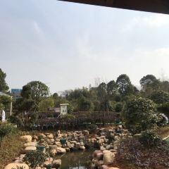 鴻天康逸溫泉山莊用戶圖片