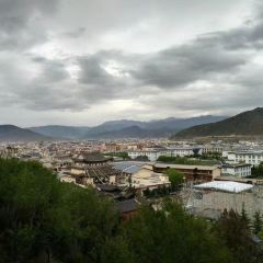Guishan Park User Photo