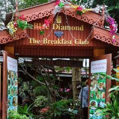 Blue Diamond Breakfast Club User Photo