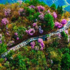 Chuanyan Mountain National Forest Park User Photo