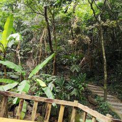 Dong'an Wetland Park User Photo