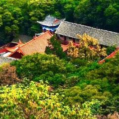 Huangzang (Imperial Treasure) Valley National Forest Park User Photo
