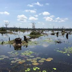 Neak Pean User Photo