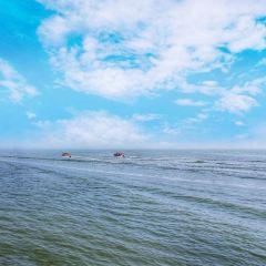 涼城岱海用戶圖片