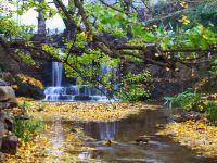 細數貴州7大賞秋之地,原來濃妝淡抹的秋色都藏在了這裡!