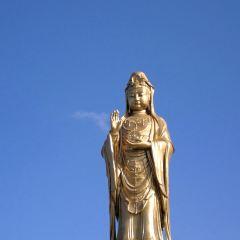 普陀山觀音聖境體驗館用戶圖片