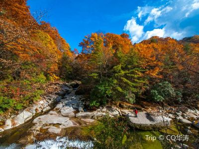 米倉山國家森林公園