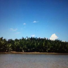 깜낌 섬 여행 사진
