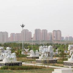 蒙古象棋廣場用戶圖片