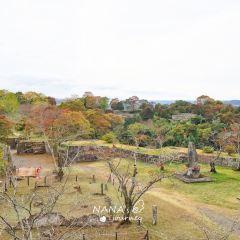 Takeda Castle Ruins User Photo