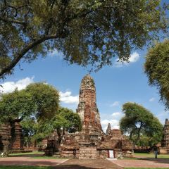 Wat Phra Ram User Photo