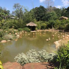 Vinpearl Safari Phu Quoc User Photo