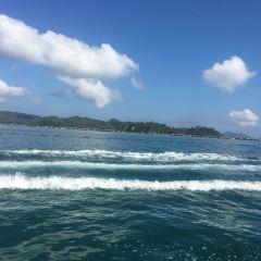 Seawalker Sapi Islands User Photo
