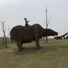 南山草原用戶圖片
