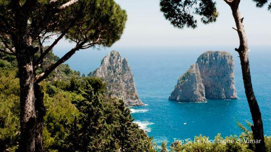 Terrazza Brunella Reviews Food Drinks In Campania Capri