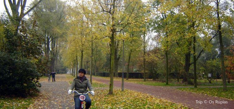 Beatrixpark3