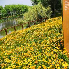 Huashan National Forest Park User Photo