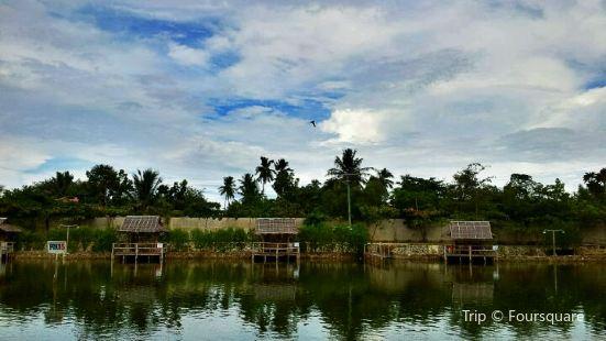 Papa Kit's Marina and Fishing Lagoon