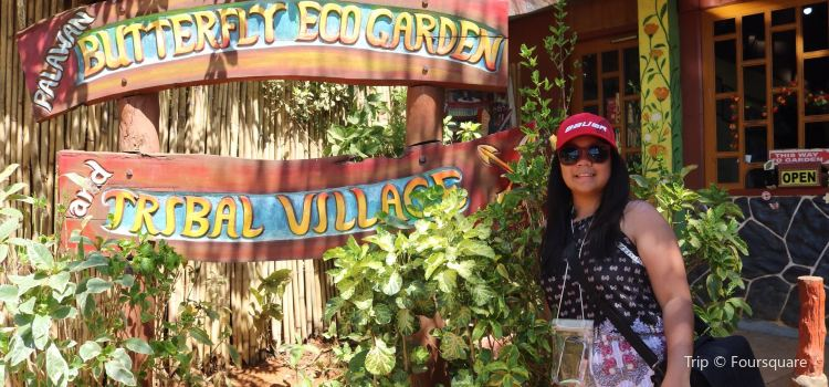 Palawan Butterfly Ecological Garden and Tribal Village3