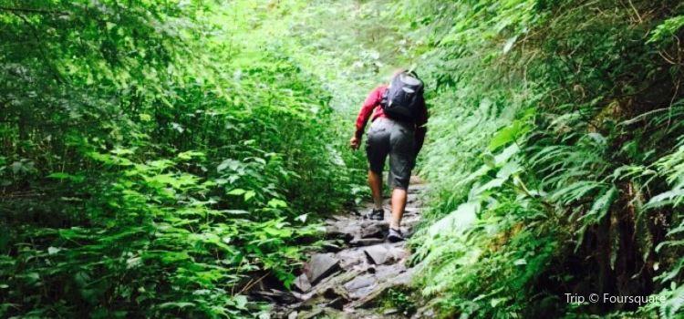 Deer Mountain Trail3