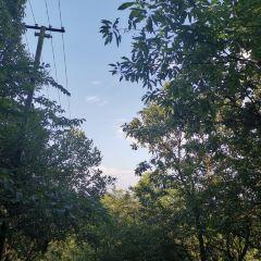 西山公園用戶圖片