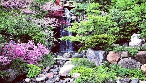 Anderson Japanese Gardens Travel Guidebook Must Visit Attractions