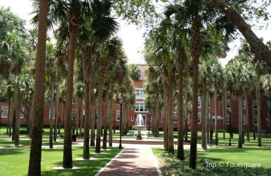 Stetson University3