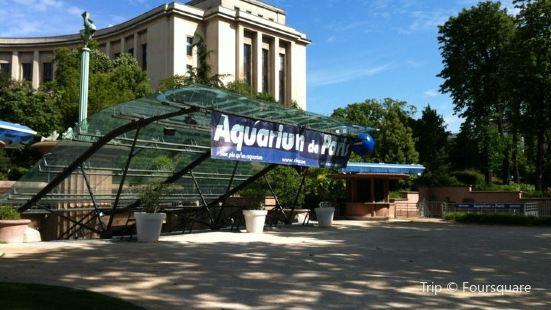 パリの水族館シネアクア