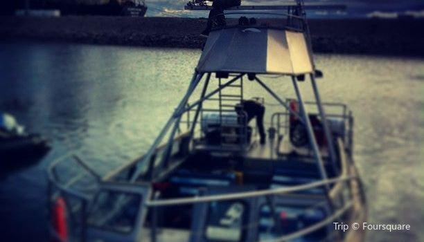 Sea North Tours1